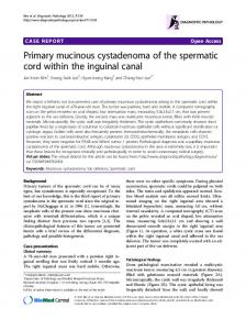 Primary mucinous cystadenoma of the spermatic cord within the inguinal canal