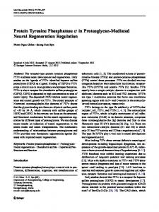 Protein Tyrosine Phosphatase σ in Proteoglycan-Mediated Neural Regeneration Regulation