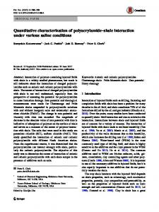 Quantitative characterization of polyacrylamide–shale interaction under various saline conditions