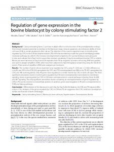 Regulation of gene expression in the bovine blastocyst by colony stimulating factor 2