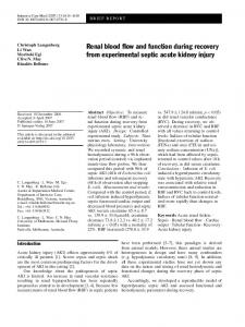 Renal blood flow and function during recovery from experimental septic acute kidney injury