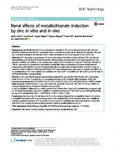 Renal effects of metallothionein induction by zinc in vitro and in vivo