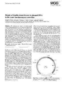 Repair of double-strand breaks in plasmid DNA in the yeast Saccharomyces cerevisiae