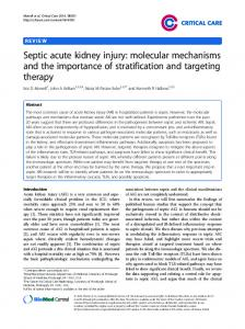 Septic acute kidney injury: molecular mechanisms and the importance of stratification and targeting therapy