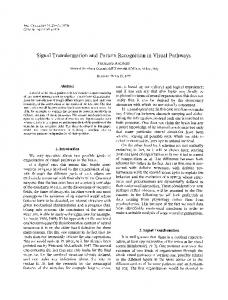 Signal transformation and pattern recognition in visual pathways