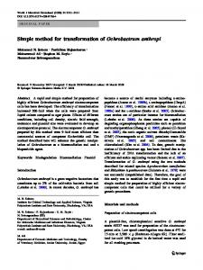 Simple method for transformation of Ochrobactrum anthropi