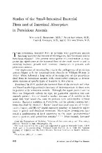 Studies of the small-intestinal bacterial flora and of intestinal absorption in pernicious anemia