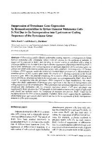 Suppression of tyrosinase gene expression by bromodeoxyuridine in Syrian hamster melanoma cells is not due to its incorporation into upstream or coding sequences of the tyrosinase gene