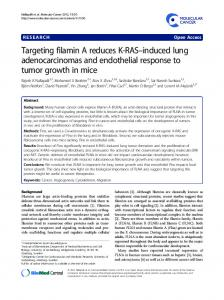Targeting filamin A reduces K-RAS–induced lung adenocarcinomas and endothelial response to tumor growth in mice
