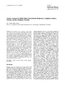 Taurine transport by rabbit kidney brush-border membranes: Coupling to sodium, chloride, and the membrane potential