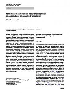 Termination and beyond: acetylcholinesterase as a modulator of synaptic transmission