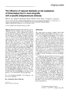 The influence of vascular diathesis on the localization of inflammatory foci in renal allografts with a specific antigranulocyte antibody