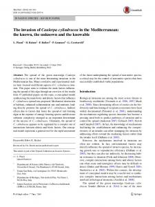 The invasion of Caulerpa cylindracea in the Mediterranean: the known, the unknown and the knowable
