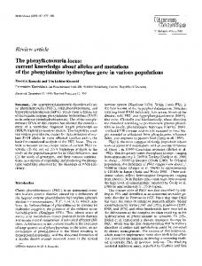 The phenylketonuria locus: current knowledge about alleles and mutations of the phenylalanine hydroxylase gene in various populations