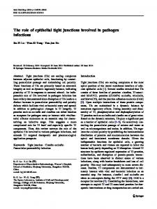 The role of epithelial tight junctions involved in pathogen infections