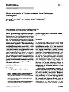 Three new species of Ophiostomatales from Nothofagus in Patagonia