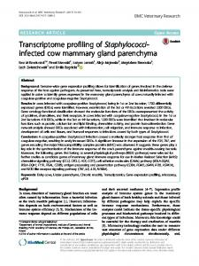 Transcriptome profiling of Staphylococci-infected cow mammary gland parenchyma