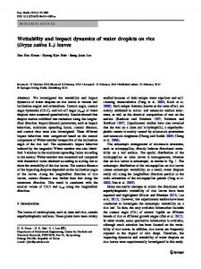 Wettability and impact dynamics of water droplets on rice (Oryza sativa L.) leaves