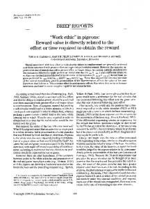 """work ethic"" in pigeons: Reward value is directly related to the effort or time required to obtain the reward"